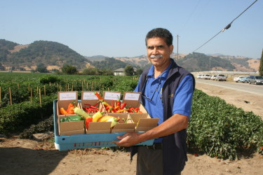 Sustaining Agriculture in the Coyote Valley services